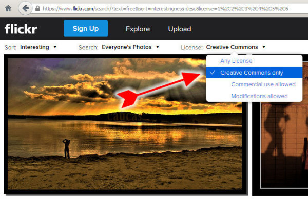 search-creative-commons-flickr-free